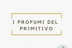 Salento Wine tour  Profumi del Primitivo